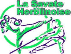 Logo vert et bleu petit